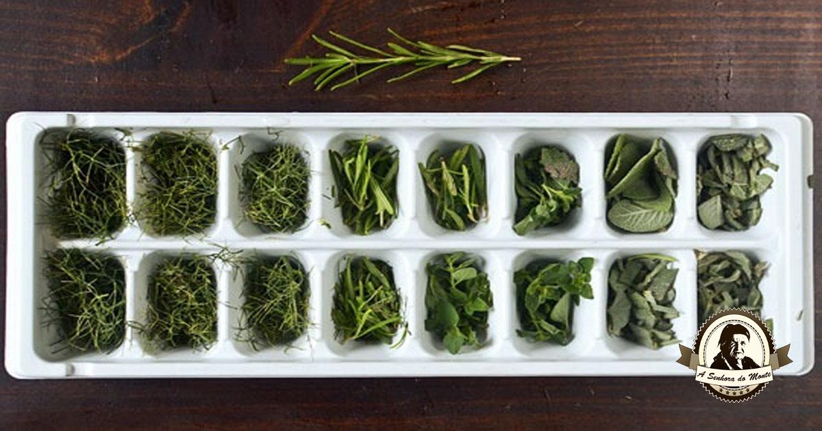 Aprenda a congelar ervas aromáticas em azeite
