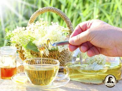 Chá de flor de sabugueiro com mel