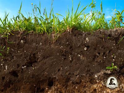 Composição e propriedades do solo