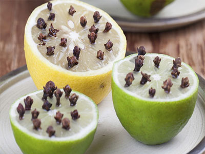 Espante as moscas com citrinos