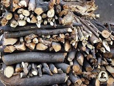 Abrigos de troncos