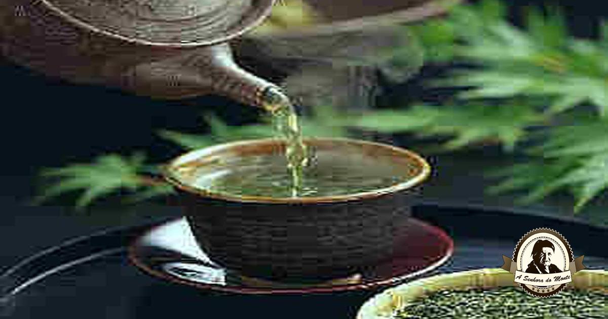Recomendações no uso do chá com plantas medicinais