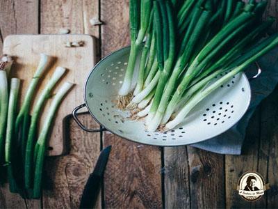 Benefícios das cebolas