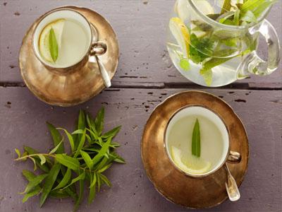 Chá de lúcia-lima