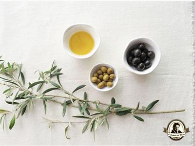 História do azeite