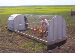 tractor de galinhas