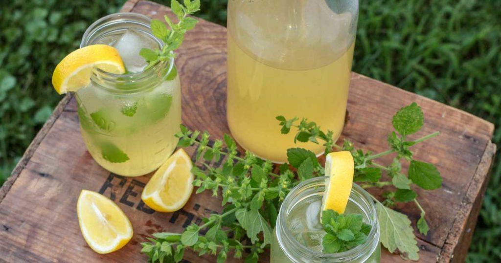 Sumos naturais saudáveis - Cidreira com maçã e limão