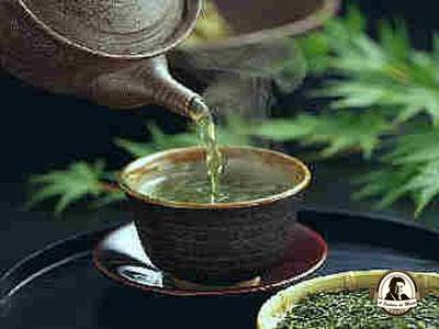 Chá de rúcula