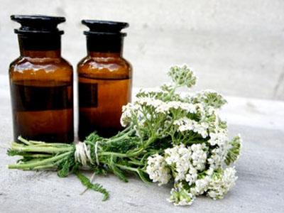 Tratamentos naturais com milefólio