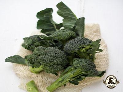 Propriedades terapêuticas dos bróculos