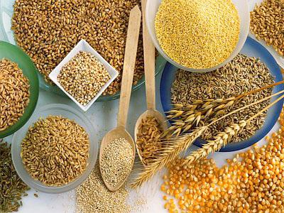 Propriedades e indicações terapêuticas de sementes