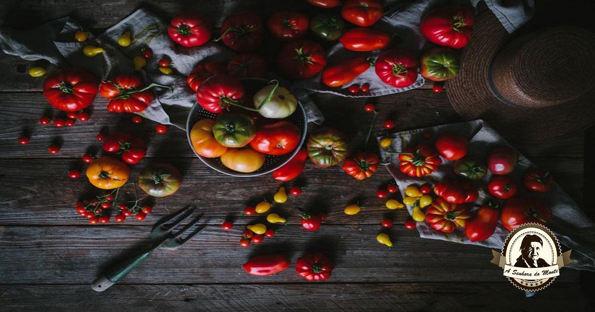 Polpa ou molho de tomate caseiro