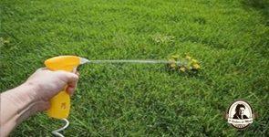 Herbicida natural de vinagre