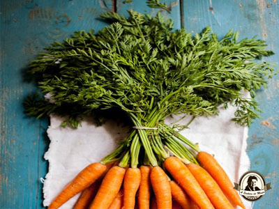 Sopa de rama de cenoura
