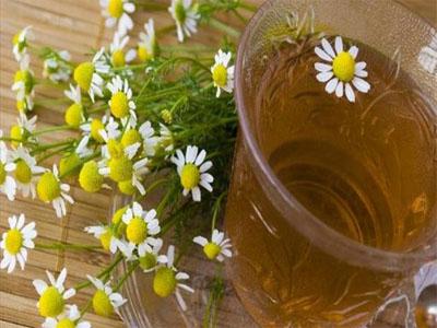 Chá de camomila no tratamento das olheiras