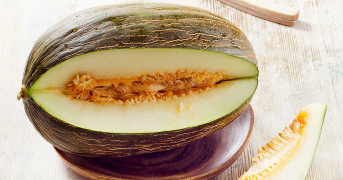 Aprenda quais são os benefícios do consumo de melão