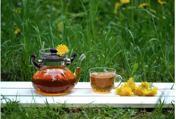 Perca peso e desintoxique o organismo com Chá de Dente-de-Leão
