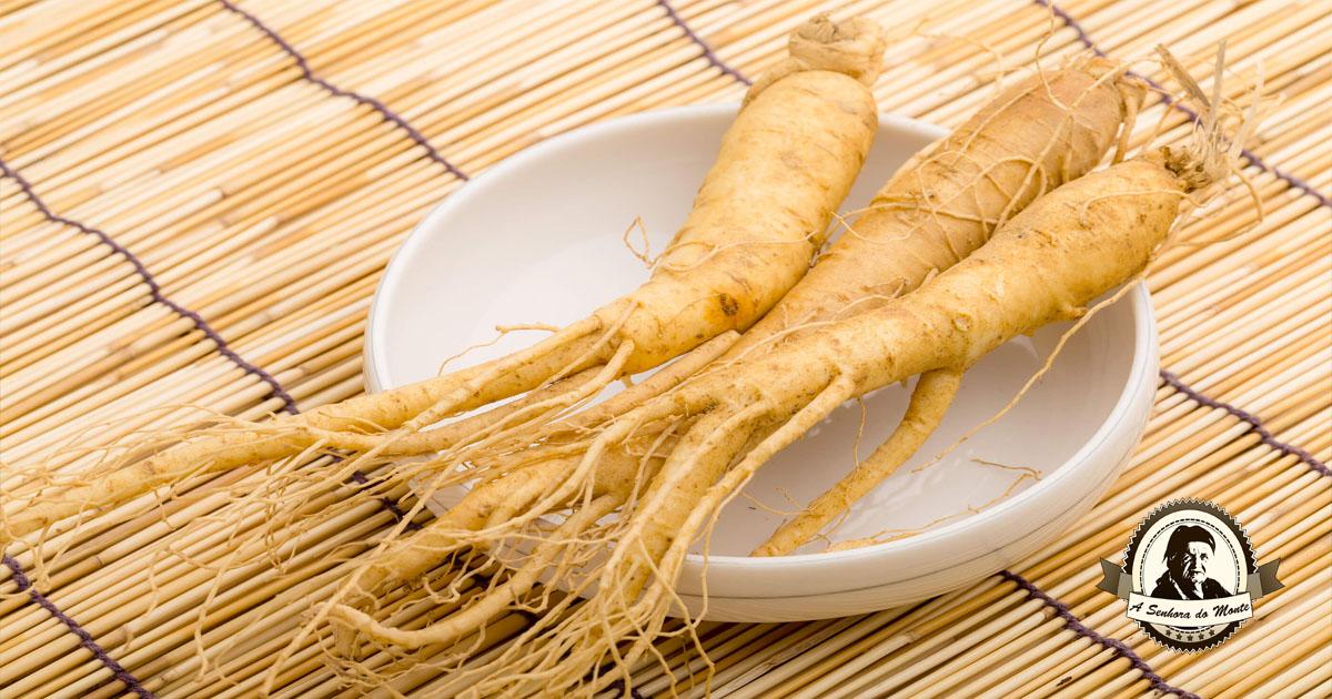 Benefícios do consumo regular de raiz de Ginseng