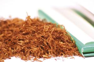 homemade-pesticide-insecticide-tobacco-spray