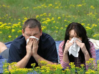Tratamento caseiro contra rinite e sinusite