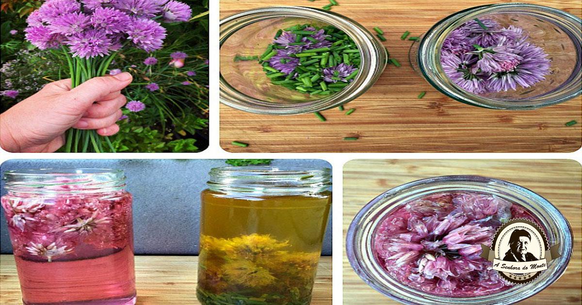Aprenda a fazer azeite e vinagre de flores de cebolinho