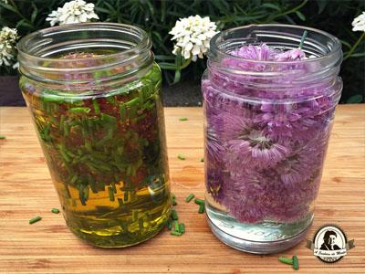 Como fazer vinagre e azeite aromatizado com cebolinho
