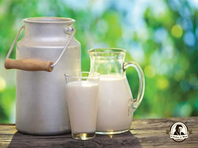 Diferença entre leite integral e leite desnatado