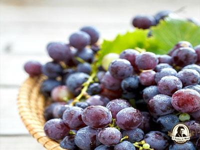 As uvas são benéficas para o cérebro