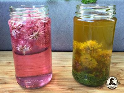 Vinagre e azeite aromatizados com cebolinho