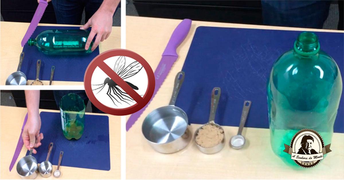 Armadilha caseira para mosquitos