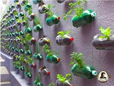 Reutilização de garrafas de plástico