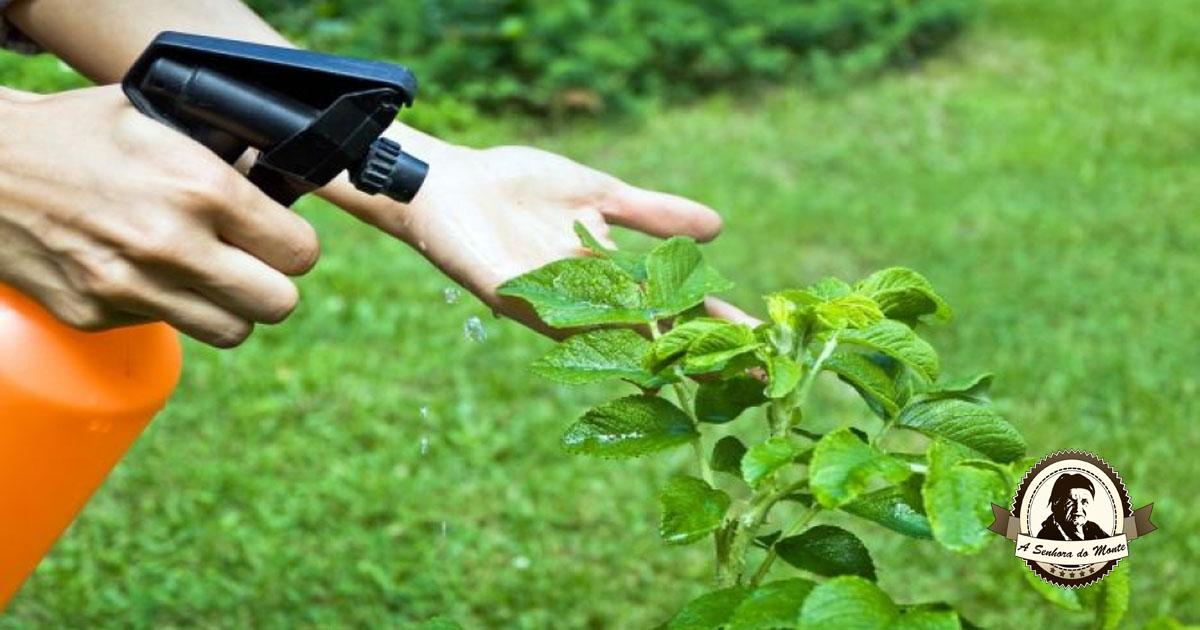 Adubos e pesticidas orgânicos