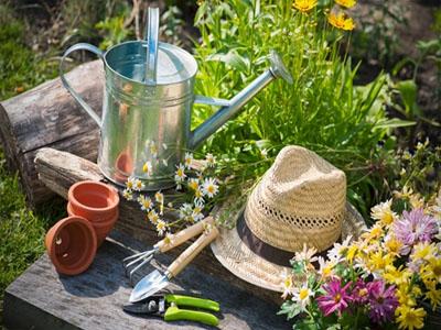 Manutenção de utensílios de jardinagem