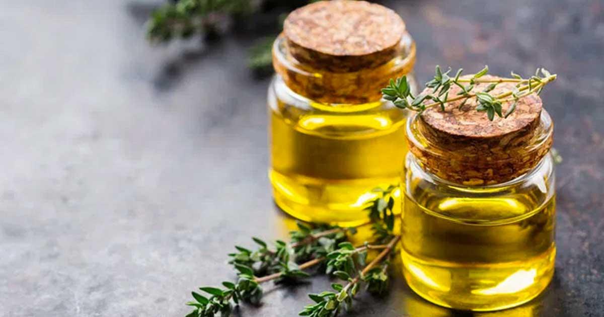 Aprenda quais são os benefícios do óleo de tomilho