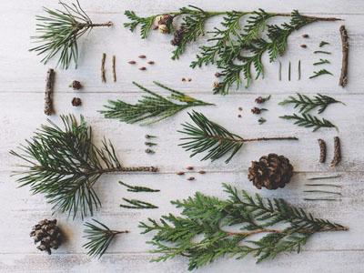 Ideias para embrulhos de Natal com materiais naturais