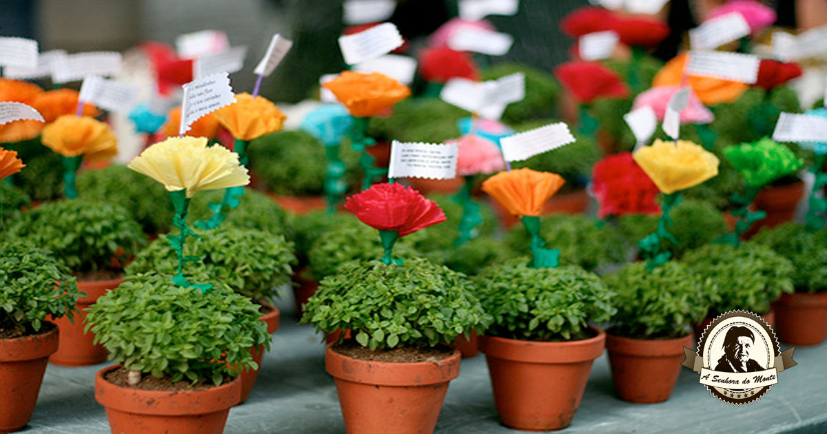 Já conhece a tradição dos manjericos?