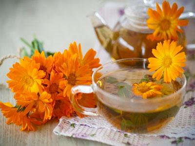 Tratamentos naturais com chá de calêndulas