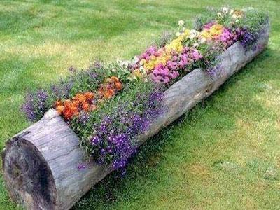 Ideias de decorações naturais para o seu lar