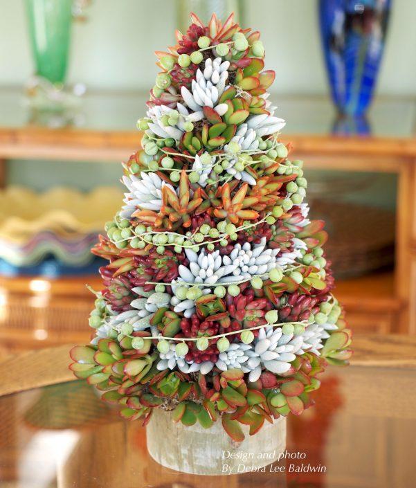 Aprenda a fazer uma árvore de Natal original feita com suculentas