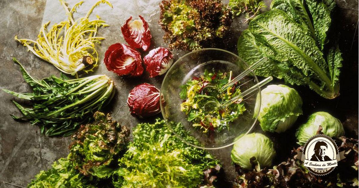 Aprenda a plantar e a colher chicórias para as suas saladas