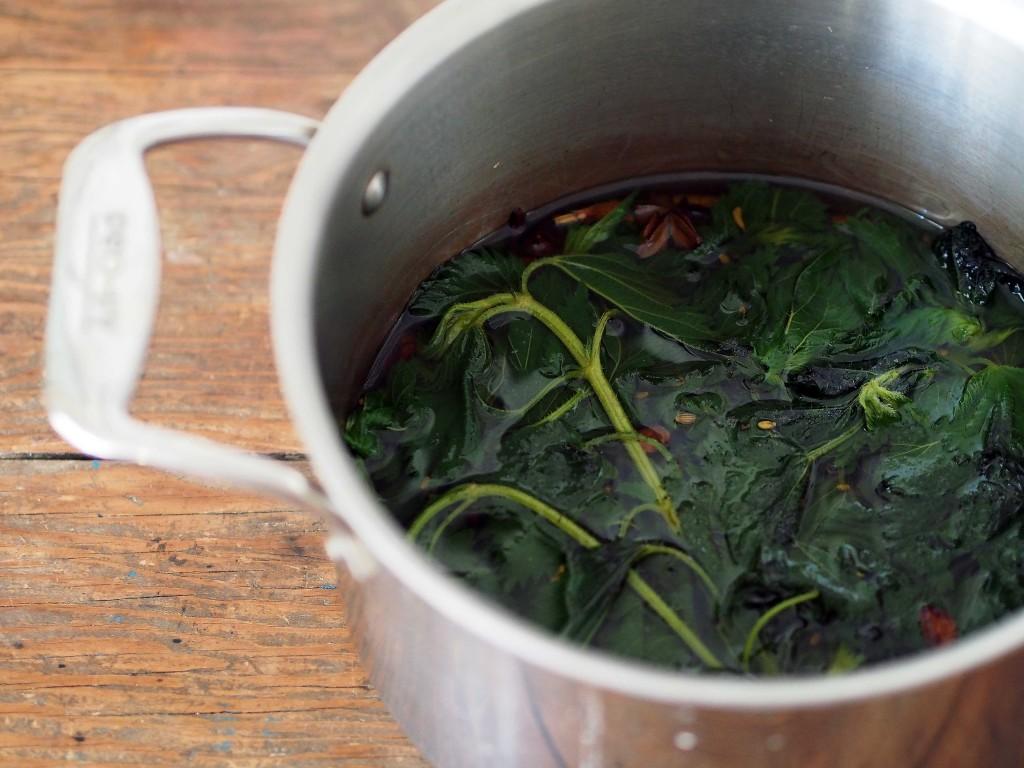 A urtiga é um super alimento! Já experimentou chá de urtigas?