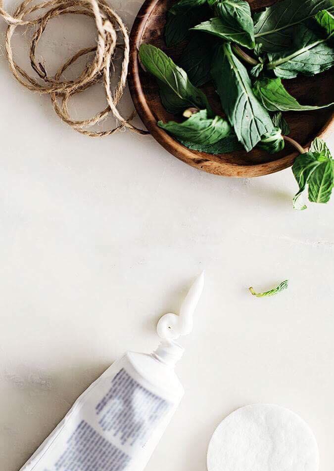 Tratamentos naturais contra picadas de mosquitos