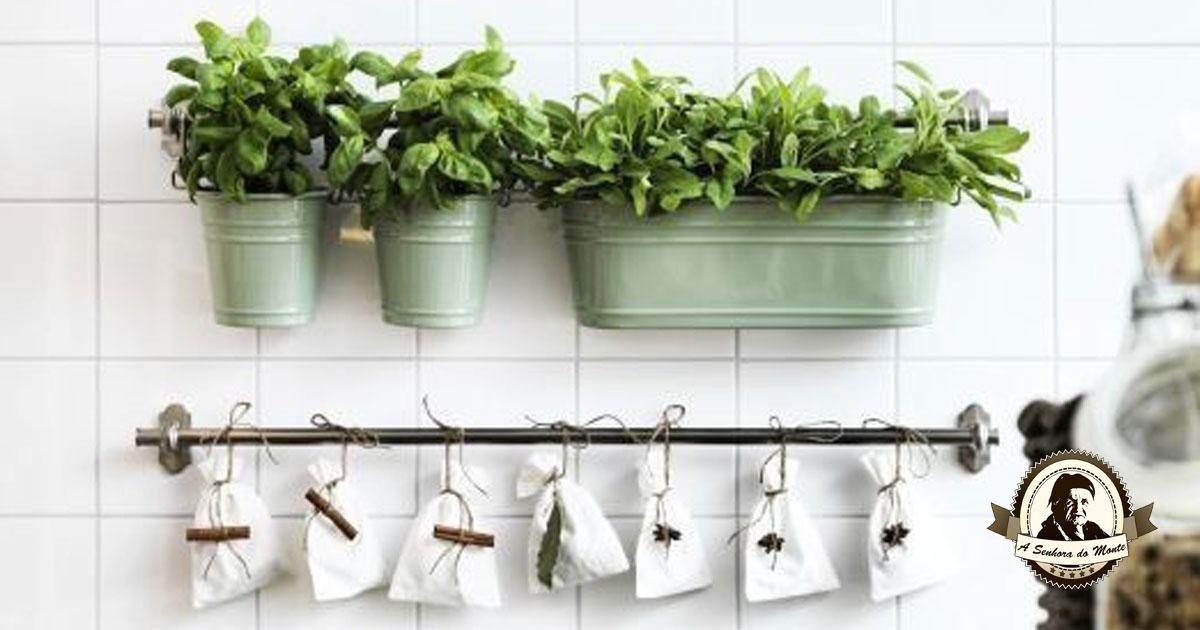 Não tem quintal? Aprenda a montar uma horta em sua casa!