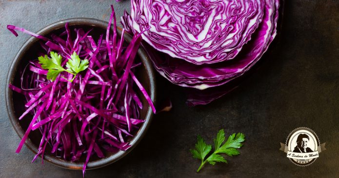 Couve roxa - Aprenda quais são os benefícios para a sua saúde!