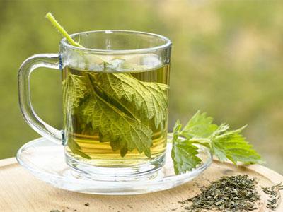 Chá de urtigas