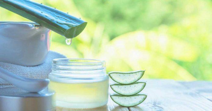 Hidrate o seu cabelo com produtos feitos de aloé vera