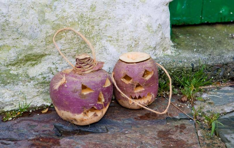 Tradição do Dia das Bruxas ou Halloween - venha o diabo e escolha!