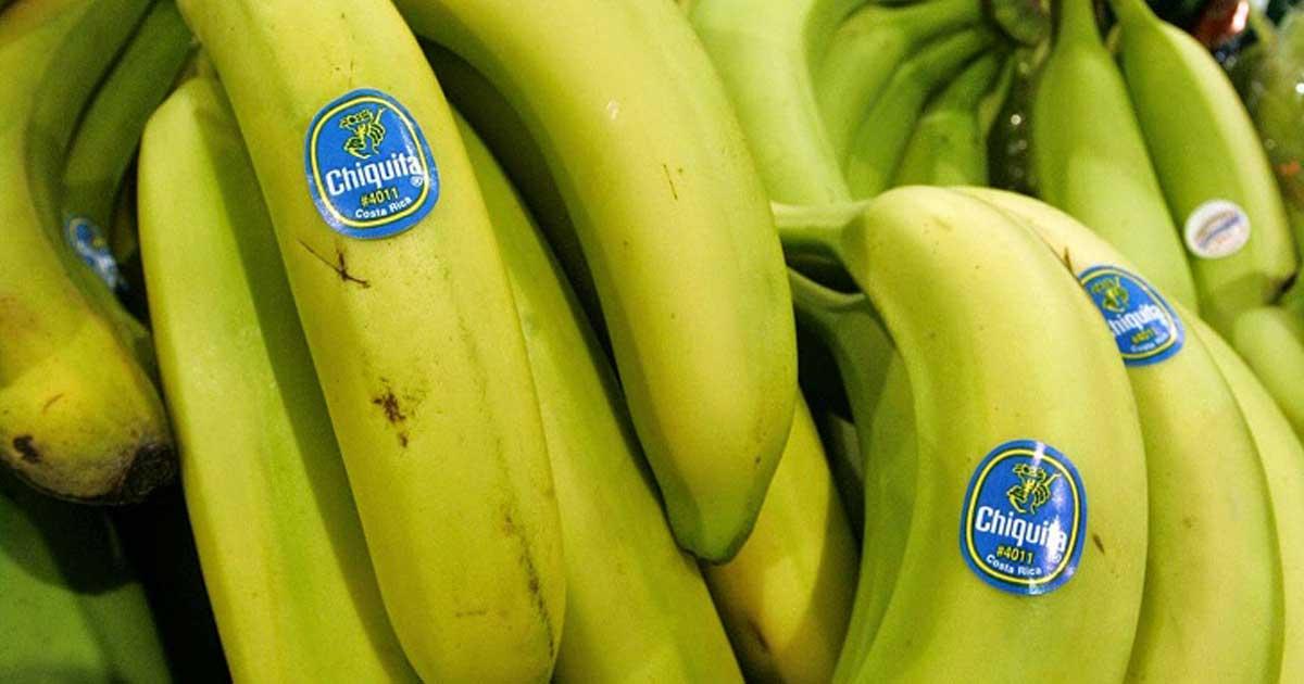 Sabe o que representam os adesivos encontrados nas frutas e vegetais?