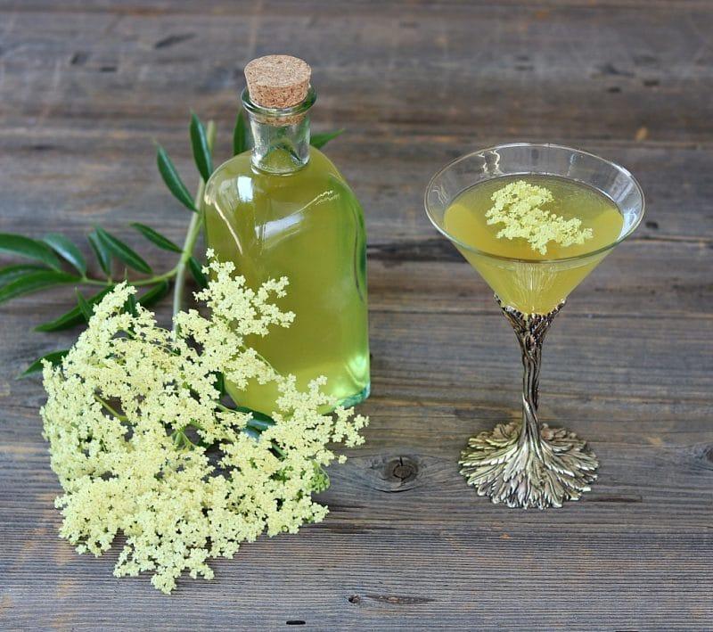 Aprenda a fazer licor de flores de sabugueiro