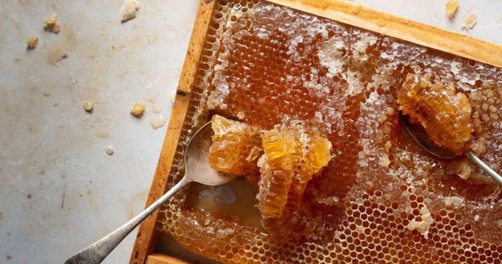 Saiba quais são as 10 utilizações menos conhecidas do mel